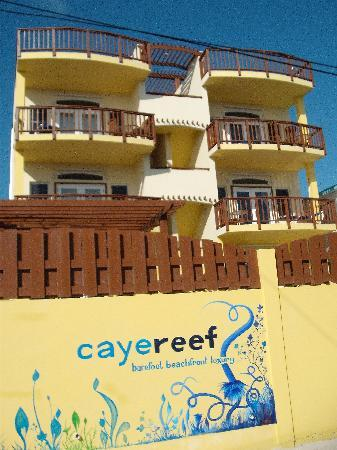 CayeReef : Impressive front view of building