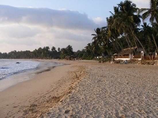 Sunset Hotel: Beach in front of hotel