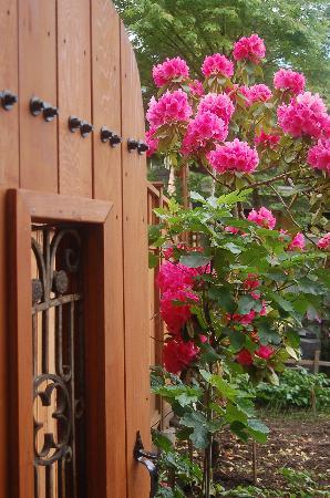 Bee & Thistle Guest House: Our Gate is Open to the World