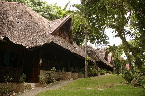 696b66a509000 huts along the landscaped garden - Picture of Alona Tropical Beach ...