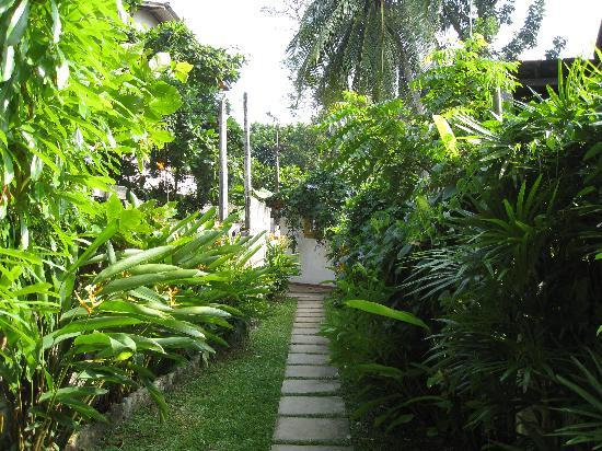 Sea Breeze Guest House: Garden