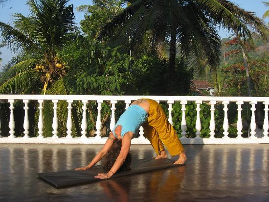 Sea Breeze Guest House: Yoga on the roof