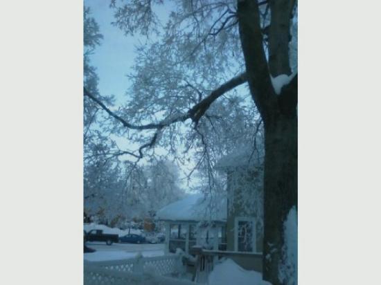 Estherville-billede