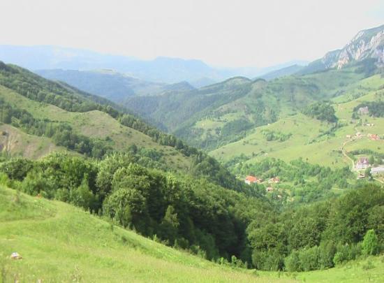 Arad-billede