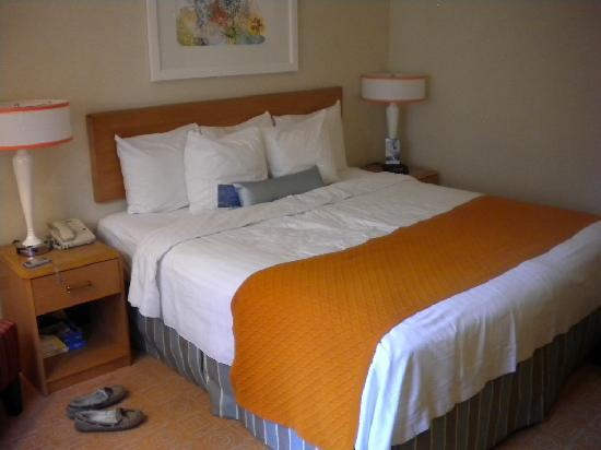 Fairfield Inn & Suites Chicago Downtown/Magnificent Mile: Fairfield Room