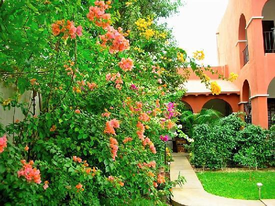 Casa Santiago: Beautiful fragrant garden