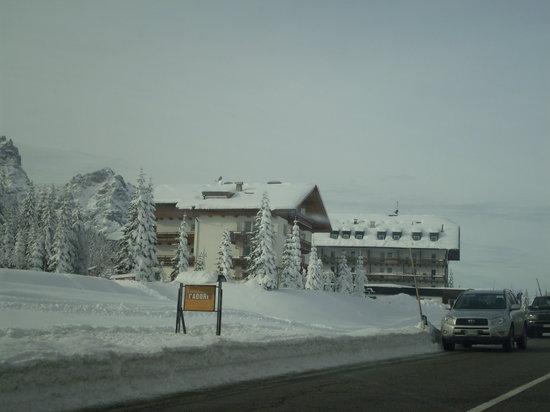 Hotel Evaldo: unico