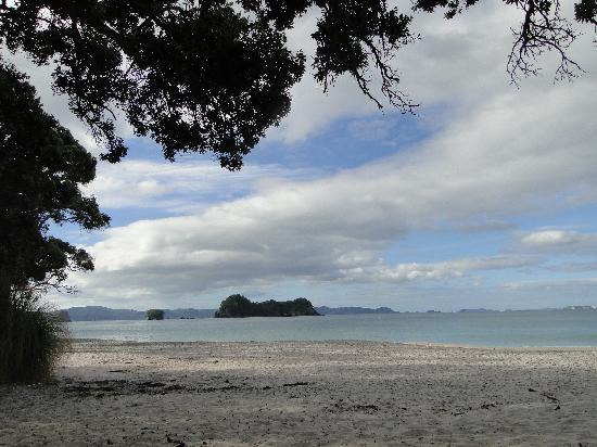 Cathedral Cove Bed and Breakfast : The nearby Hahei Beach