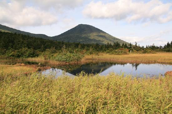 Suiren Pond: 睡蓮沼に映る八甲田