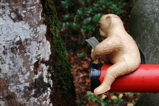 Natadera Temple: Natadera Monkey