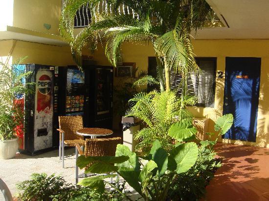 Granada Inn: hotel garden