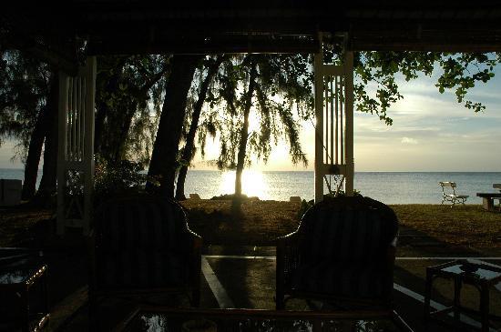 Les Lataniers Bleus: vue de la terrasse de la chambre