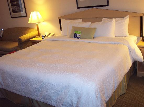 Hampton Inn & Suites San Francisco-Burlingame-Airport South: Zimmer