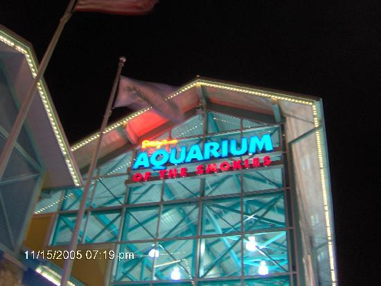 Sunrise Ridge Resort: Aquarium, it was well worth the trip! kids & we loved it!