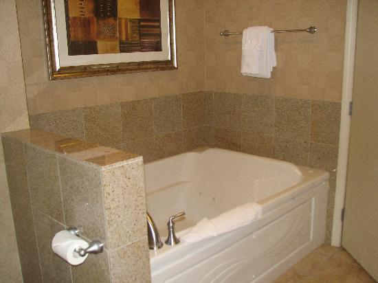 Platinum Hotel And Spa Bathroom Jetted Tub