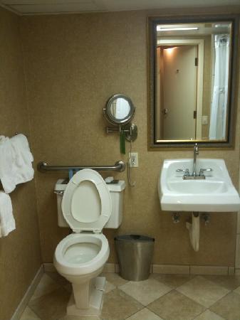 Hilton Tampa Airport Westshore: bathroom