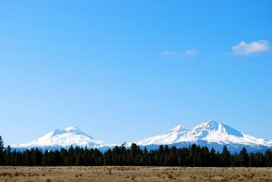 Five Pine Lodge & Spa : Surrounding Mountains