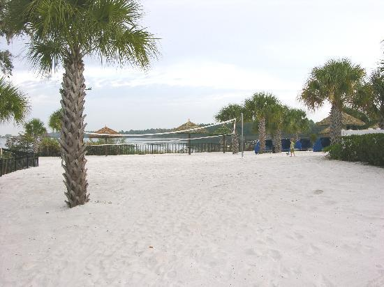 Bahama Bay Resort Orlando by Wyndham Vacation Rentals: Volleyball on the beach...