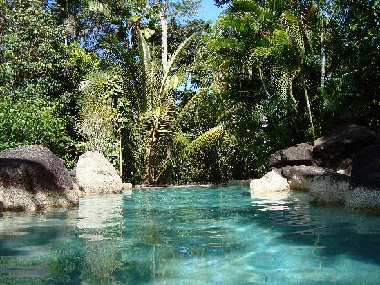 Licuala Lodge: swimming pool