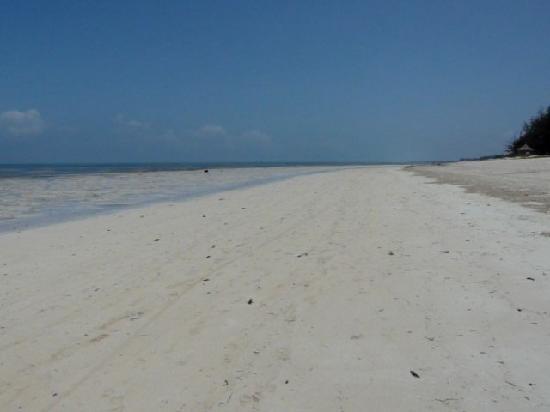 Bahari View Lodge: Strand