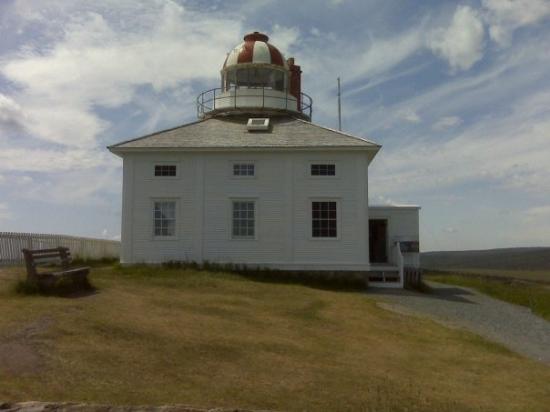 Bilde fra St. John's