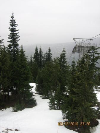 Grouse Mountain: Grouse Moutain. So pretty. It snowed.