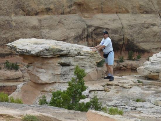 Colorado National Monument: How'd he get out there?!!!