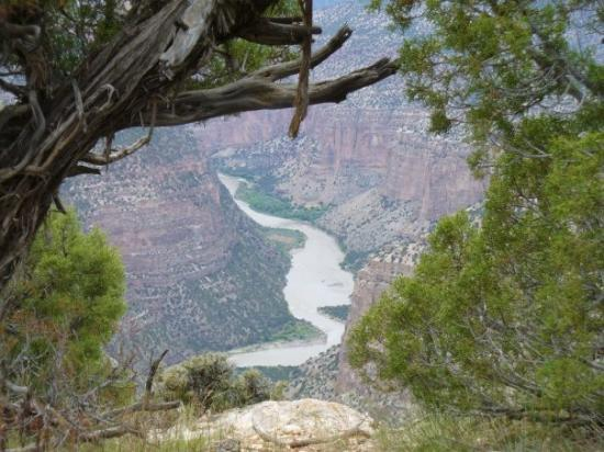 Dinosaur, CO: Green River looking down from Harper's Corner Trail.