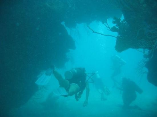Hamilton, Islas Bermudas: Bermuda scuba diving