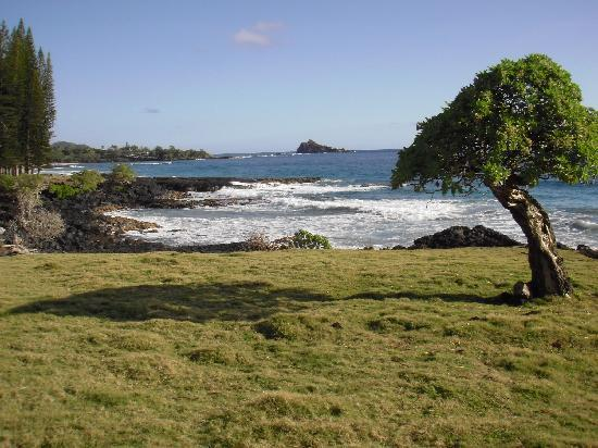 The Guest Houses at Malanai in Hana : Across the road