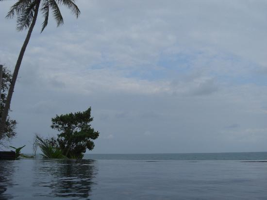 Nora Buri Resort & Spa : view from plunge pool
