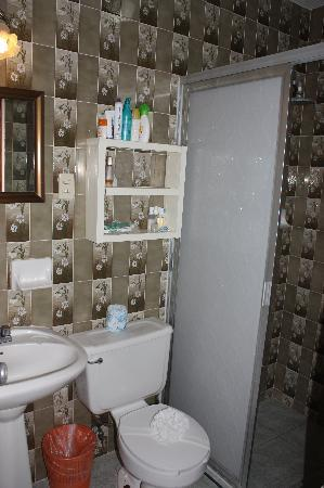 Francis Arlene Hotel: Bathroom