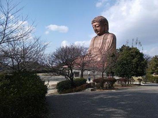 Tokai, Japón: 大仏さま