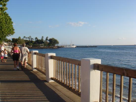 Lahaina Inn: 海岸線ー!夕焼けがきれい