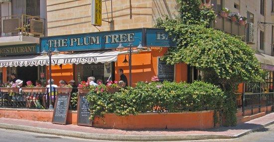 The Plum Tree Bar & Restaurant: The Plum  Tree Bar & Restaurant