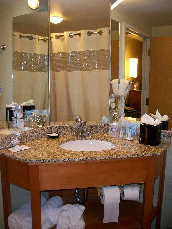 Hampton Inn & Suites Houston-Medical Ctr-Reliant Park: Bathroom