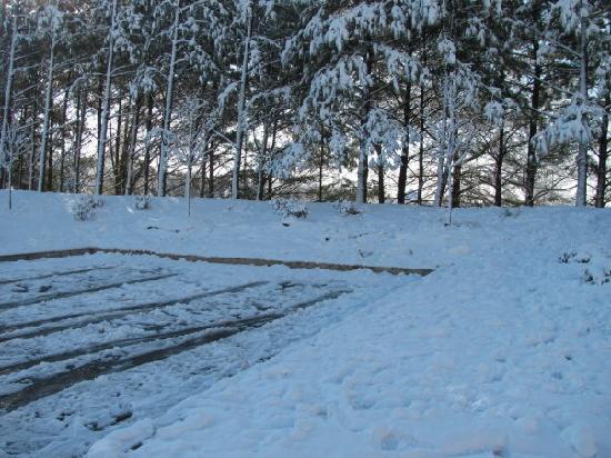 La Quinta Inn & Suites Locust Grove : snow