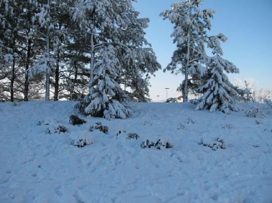 La Quinta Inn & Suites Locust Grove : more snow