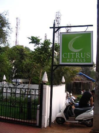 Citrus Goa: Citrus hotel logo