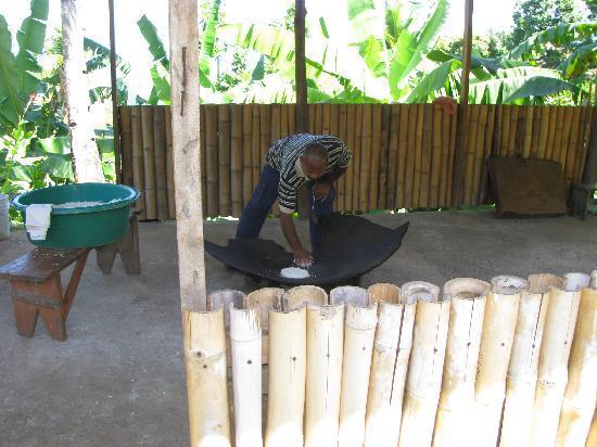 The Carib Territory : Making cassava bread, Carib Territory