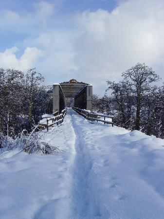Cragganmore House B & B: Covered railway bridge on Speyside Way