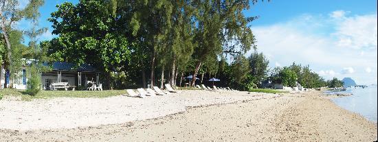 Les Lataniers Bleus: La plage