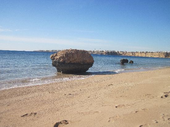 Sharm Club Resort: Beach at the Sharm Club