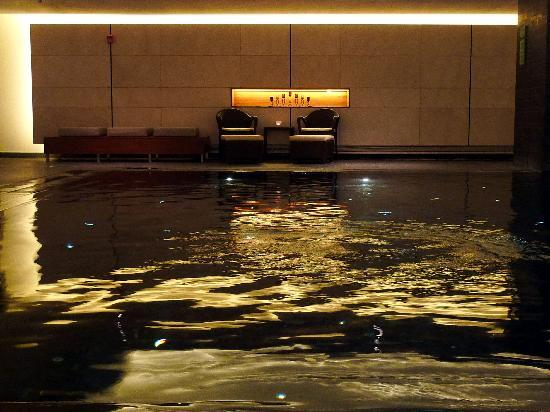 Powerscourt Hotel, Autograph Collection : Pool