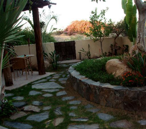 La Alianza: View from our room of our own little garden