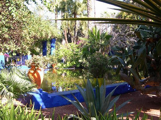 Riad el Noujoum: le jardin Majorelle magnifique