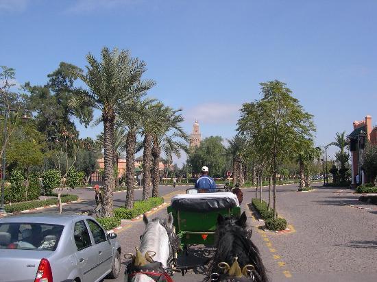 Riad el Noujoum: promenade en caléche
