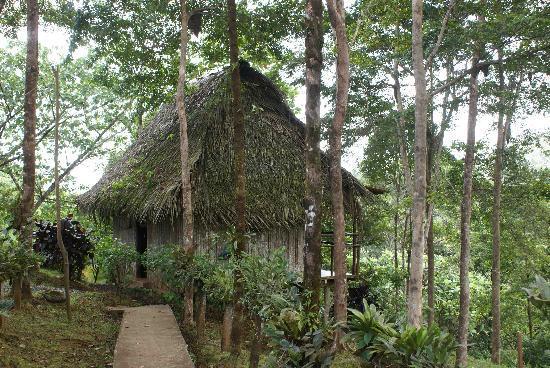 La Loma, Панама: Cabin Exterior