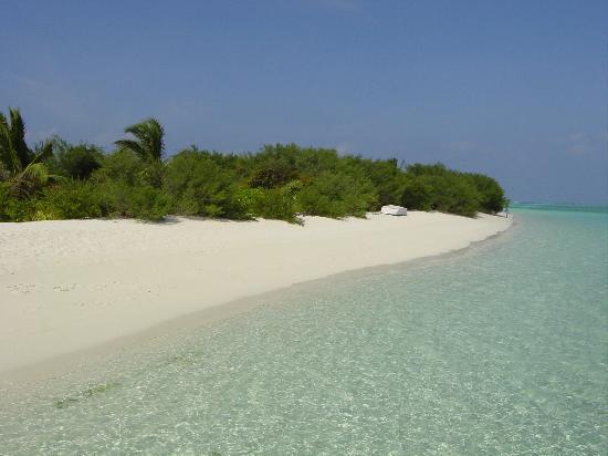 Palm Beach Resort & Spa Maldives: Arrivée à Guradu Island