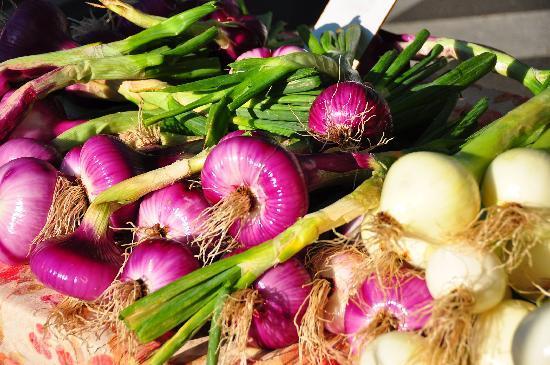Alexandra's Plaza Suite: Farmers market